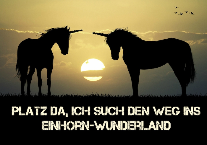 zwei schwarze einhörner im sonnenuntergang - coole einhorn sprüche und einhorn bilder - himmel mit wolken und einer großen gelben sonne - schwarze gliegende vögel