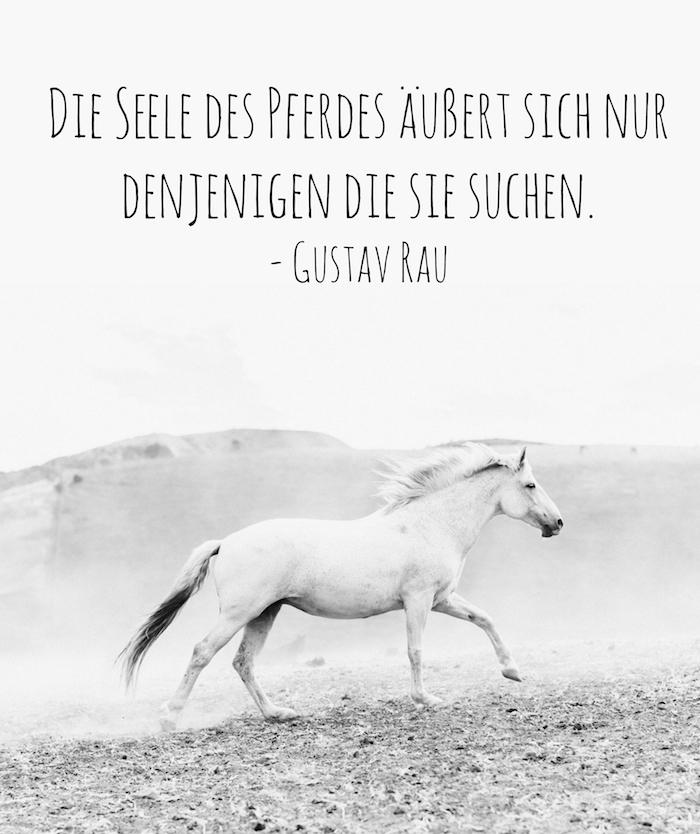 ein weißes pferd mit einem weißen schwanz, einer langen weißen mähne und schwarzen augen und grauen hufen, steine und ein zitat von gustav rau