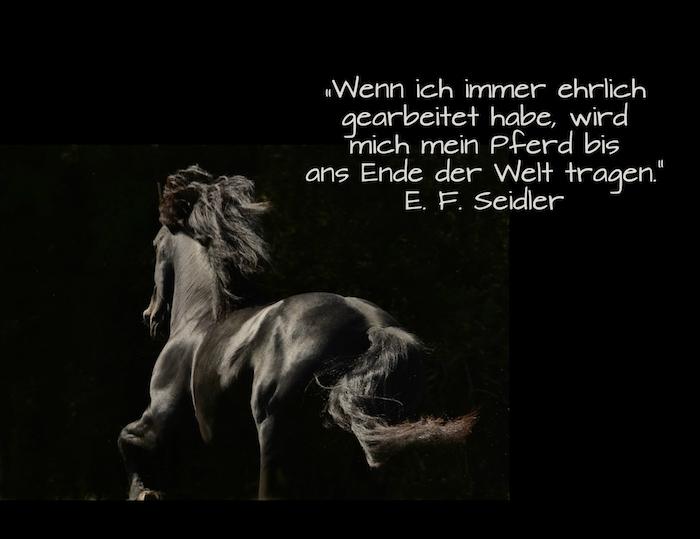 werfen sie einen blick auf dieses bild mit einem laufenden, schwarzen pferd mit schwarzen hufen, einer schwarzen mähne und schwarzen augen, tolles pferdebild mit einem zitat und pferdespruch
