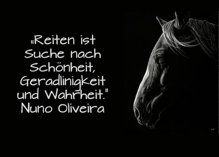 jetzt zeigen wir ihnen ein bild mit einem schwarzen pferd mit einem langen weißen mähne und schwarzen augen und einem kurzen schönen pferdesppruch