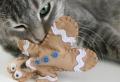 Einfache und tolle Anleitungen, wie Sie Katzenspielzeug selber machen