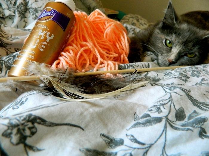 eine schwarze Katze und die nützliche Sachen zwei Spielzeuge für sie anzufertigen - Katzenbeschäftigungen