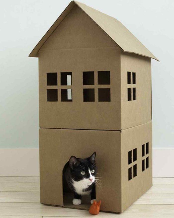 Intelligenzspielzeug für Katzen - ein Häuschen aus Karton mit Fenster und Tür