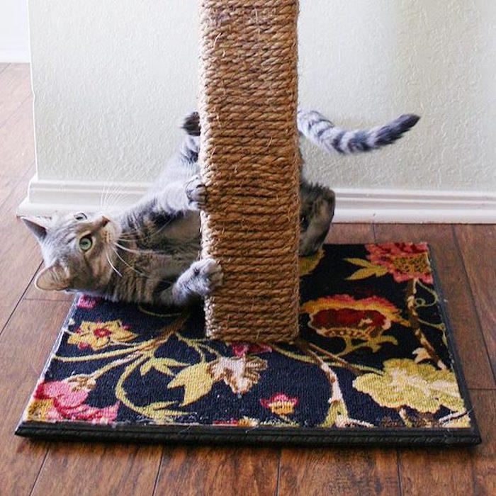 ein Kratzbaum auf einem Teppich mit Blumenmuster - Katzen Intelligenzspielzeug