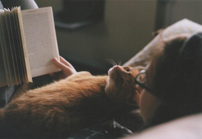 hier ist ein gute nacht bild mit einer jungen frau mit brillen, einem buch und einer schlafenden orangen katze