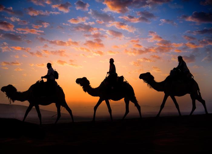 marokko bevölkerung führt ihnen zu den besonderen orten des regions safari in marokko unternehmen