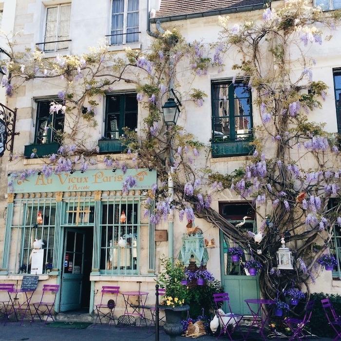 mint farbe willkommen in dem straßencafe in paris schöne kontraste niedlich grün und lila