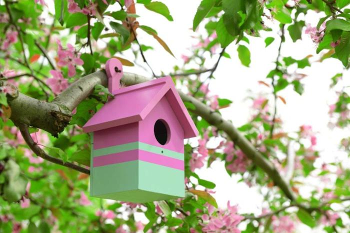 Vogelhäuschen aus Holz, rosa und grün bemalt, Frühlingsbaum, Dekoideen für fröhliche Stimmung in Ihrem Garten