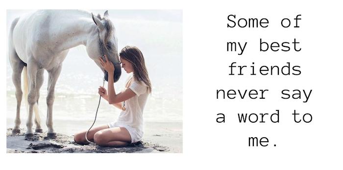 pferdesprüche english, hier ist ein bild mit einer jungen frau und einem weißen pferd mit einer weißen mähne, meer und strand