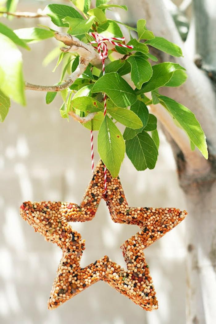 Stern aus Samen mit Faden aufhängen, Futter für Vögel, Vögeln Freude machen, frische Blätter