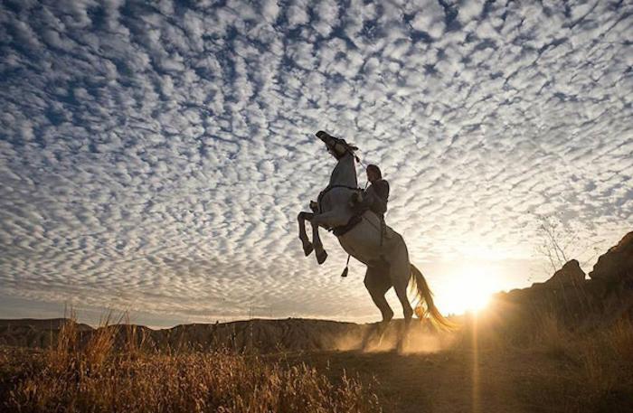 blauer himmel mit weißen wolken, ein reiter und ein weißes wildes pferd im sonnenuntergang, zum thema pferdebilder und schöne pferdesprüche