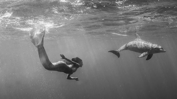 und hier ist noch ein märchenhaftes bild - hier finden sie eine meerjingfrau, die zusammen mit einem großen grauen delfin in dem meer schwimmt