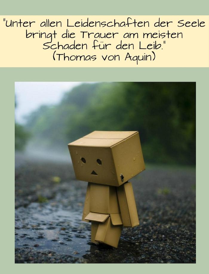 hier ist ein zitat von thomas von aquin und ein trauriges bild mit einem traurigen sprucn, der ans herz geht - ein kleines trauriges wesen aus karton auf dem weg