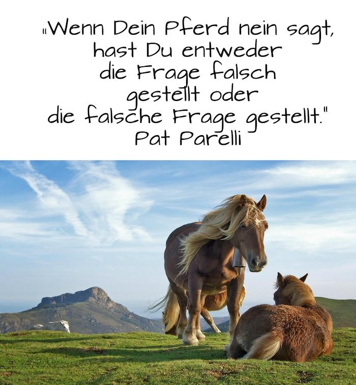 bild mit einem grünen grass, bergen, zwei braunen, wilden pferden, blauer himmel mit weißen wolken