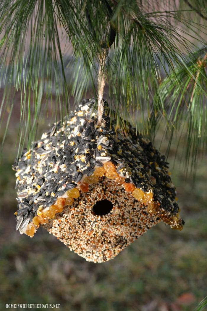 Futterhäuschen für Vögel selber machen, mit Samen, Sonnenblumenkernen und Rosinen bekleben