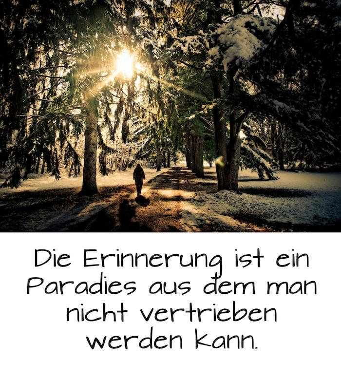 traurige sprüche zum nachdenken - hier ist ein bild mit wald und sonne und bäumen und schnee und einem einsamen kleinen menschen
