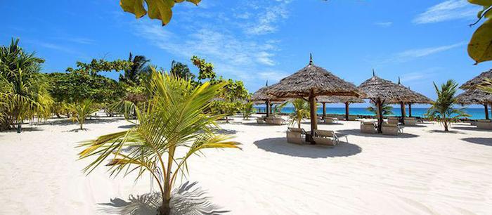 sansibar stadt bietet einzigartige urlaube palmen schirme strand wasser blauer himmel