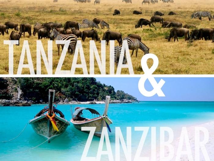 urlaub sansibar erfahrungen tansanie erfinden sansibar reise genießen safari wilde tiere oder wassersafari
