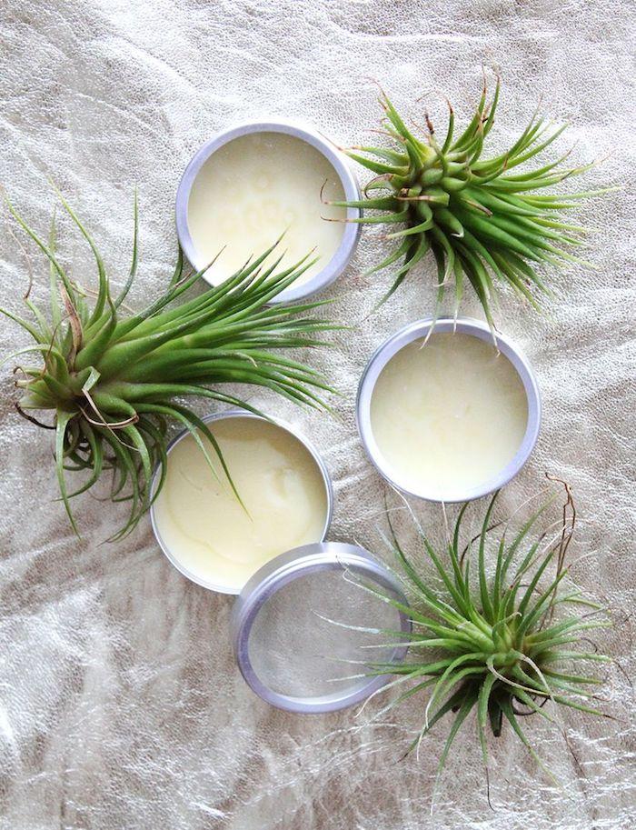 parfum selber machen, parfüm bars mit vanille und ätherischen ölen