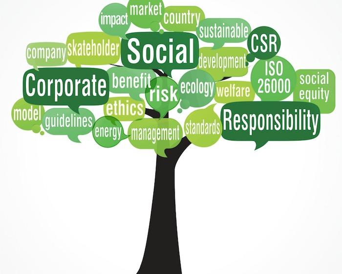 ratgeber zum bewussteren leben der baum der soziale verantwortung bessere gesellschaft