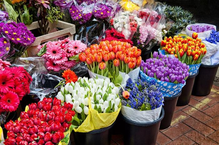 Berliner Wochenmärkte, große Vielfalt an Blumen, bunte Tulpen und Gerbera