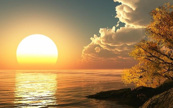 schönen Guten Morgen erstes Licht über Wasser, ein Baum mit herbstlichen gelben Blättern