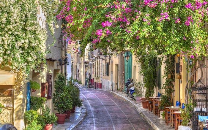hotel athen eine alee in athen athen bepflanzung violete blumen grüne pflanzen überall die schönheit der warmen mediterranen länder griechenland italien architektur