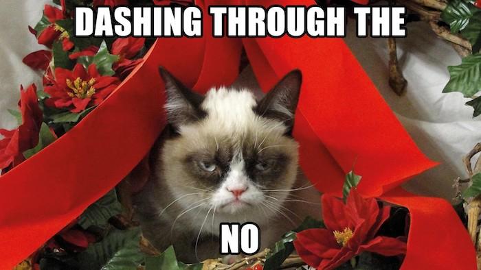 Weihnachtliche Bilder eine unglückliche Katze zwischen Weihnachtsdekorationen