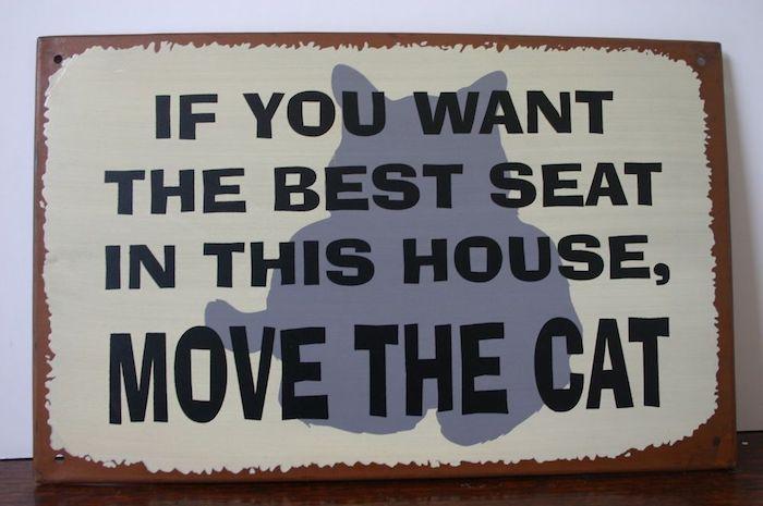ein Spruch auf Englisch auf einem Bleichschild mit braunen Kanten und kleinen Löchern zum Aufhängen, graue Katze auf einem grün-weißen Schild, dunkler Holztisch mit Lacküberzug