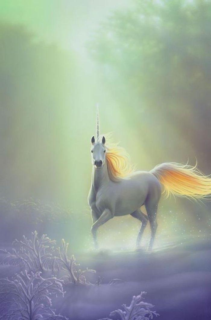 fantasy einhorn bilder - ein weißes wildes einhorn mit einer gelben dichten mähne und einem langen horn
