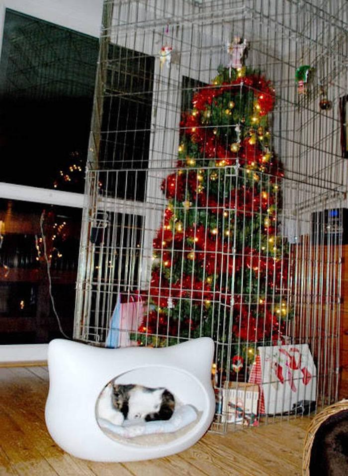 ein Weihnachtsbaum ist hinter Gittern, um vor der Katze geschützt zu werden - lustige Weihnachtsgrüße