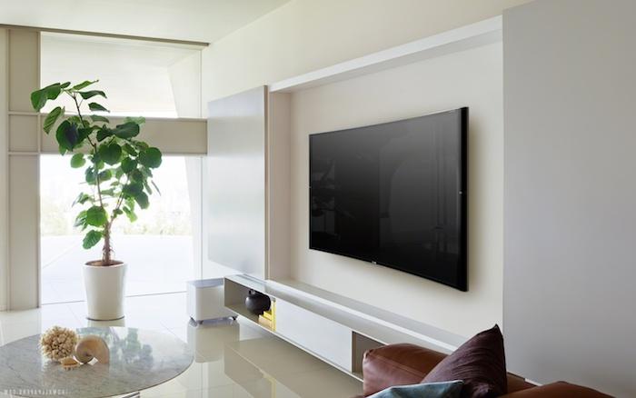 tv paneel auf der weißen wand wandgestaltung wandfarbe weiß schwarzer fernseher grüne pflanze palme in dem zimmer