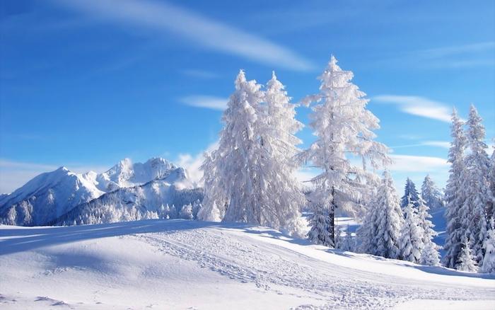 schönes winterbild mit einem blauen himmel mit weißen wolken und einem wald mit weißen bäumen miz schnee