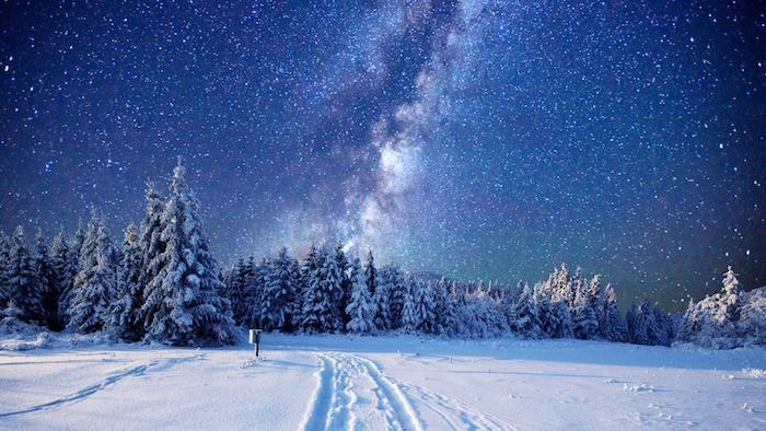 blauer himmel mit weißen sternen - ein wald mit vielen bäumen mit schnee - romantische winterbilder