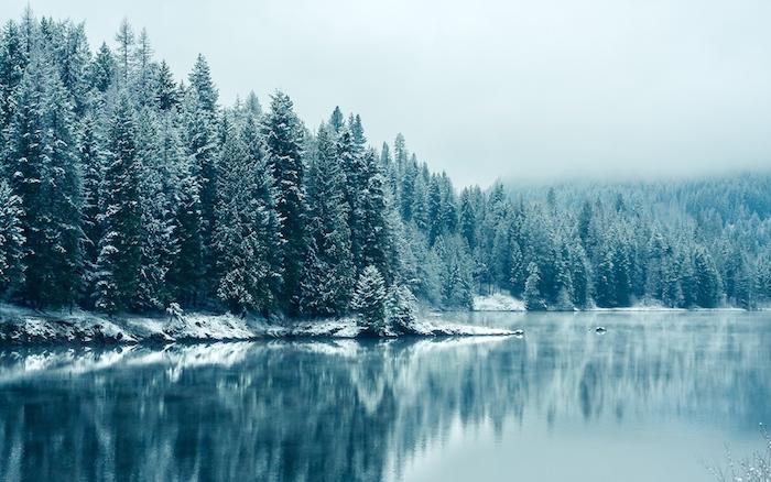 ein blauer see mit einem wald mit vielen bäumen mit schnee