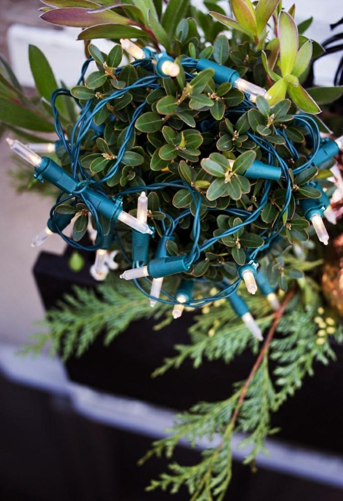 Fensterbank Deko für Außen - grüne Pflanze mit kleinen dicken Blättern mit ovaler Form und einige Kieferzweige, Pflanzen mit einer Lichterkette dekorieren, Blumenkasten aus schwarzem Holz