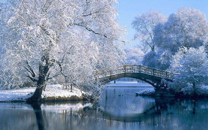 ein wintergarden mit weißen bäumen mit schnee, fluss und einer brücke - romantische winterbilder
