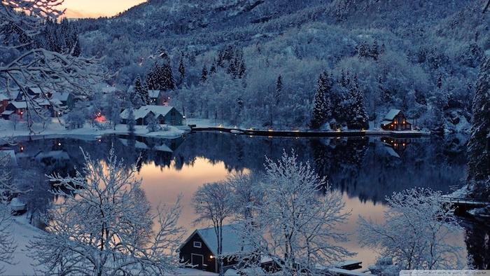 ein wald mit vielen bäumen mit schnee - ein see und kleine häuse - schönes winterbild