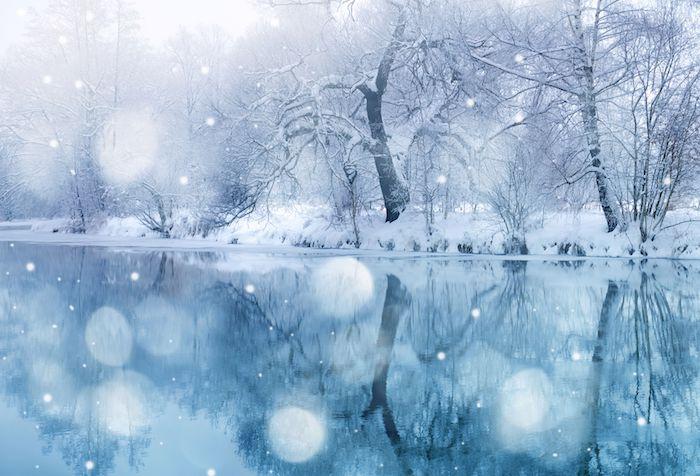 ein blauer see und ein wald mit vielen bäumen mit schnee - romantische winterbilder