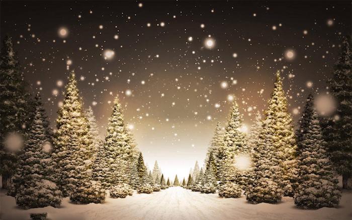 ein schwarzer himmel mit vielen weißen schneeflocken - ein wald mit grünen bäumen und schnee