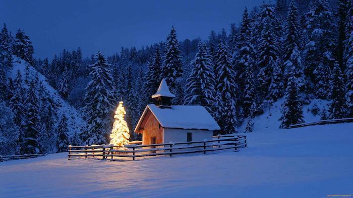 kleine kirche mit einem tannenbaum in der nacht - ein wald mit bäumen und schnee - romantische winterbilder
