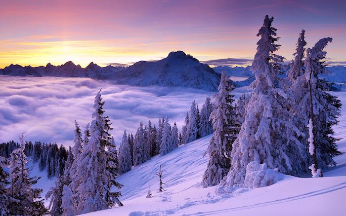 ein winterbild mit bergen mit schnee und wolken - ein wald mit viielen bäumen und schnee