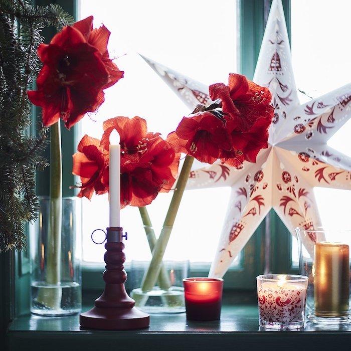 weihnachts fensterdeko rote blumen weiße kerze rote teekerze weihnachtsstern deko idee