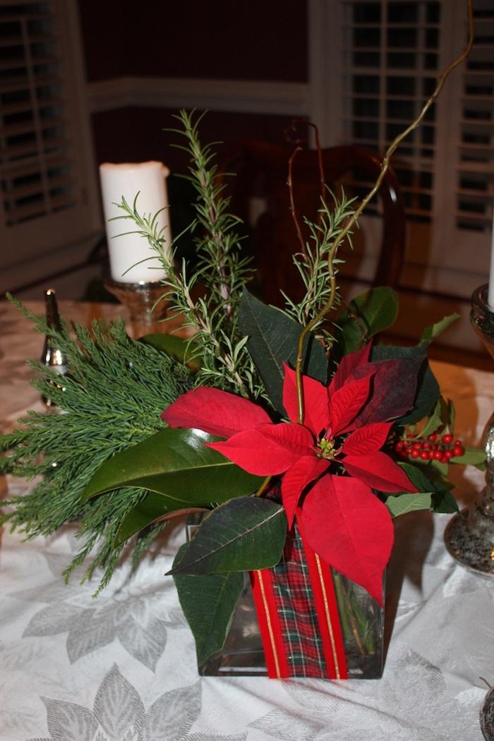 Gestecke selber machen - ein Weihnachtsstern in einem Blumentopf und Tannenzweige