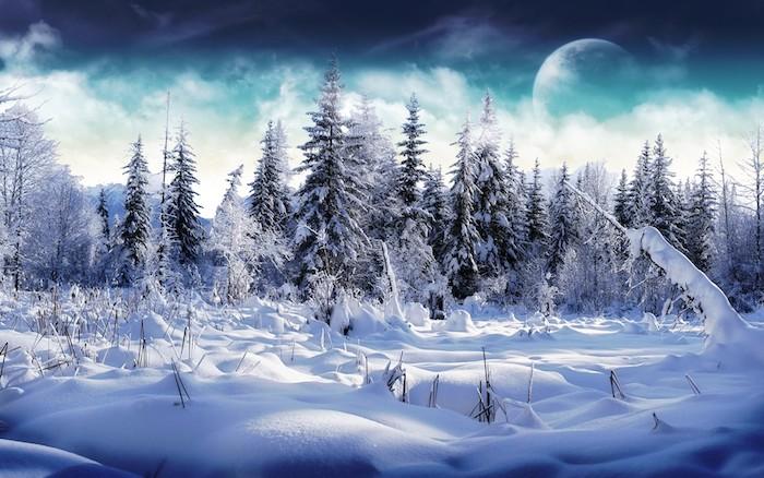 ein wald mit vielen bäumen und schnee - ein blauer himmel mit weißen wolken und einem großen mond - romantische winterbilder