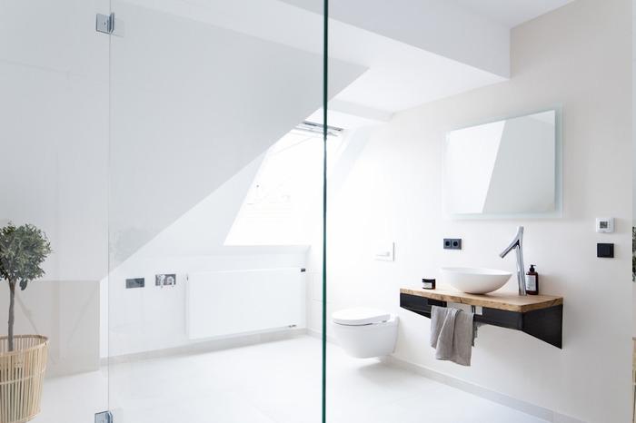 Glas-Raumteiler für Duschraum, Badezimmer komplett weiß gestalten, kleines Baum zu Hause