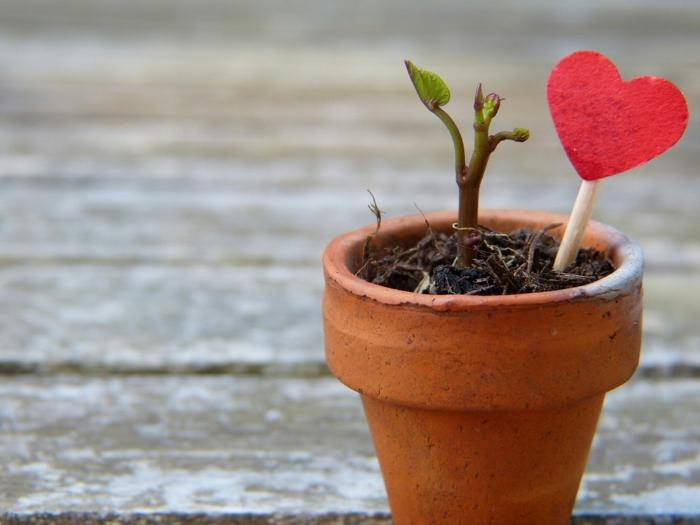 keramisches Blumentopf, Grüße zu Valentinstag, ein kleines rotes Herz als Gartendeko