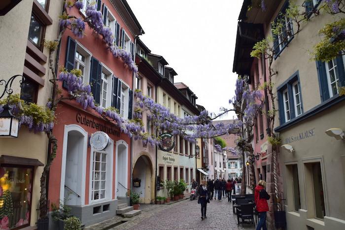 günstige urlaubsziele freiburg im breisgau deutschalnd schöne natur und architektur in den gassen deutschlands lila blumen architektur