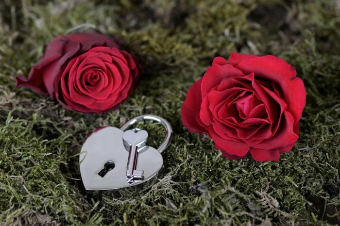 wie die beste Hintergrundbilder Liebe zu wählen - zwei rote Blumen und ein silbernes Schloss