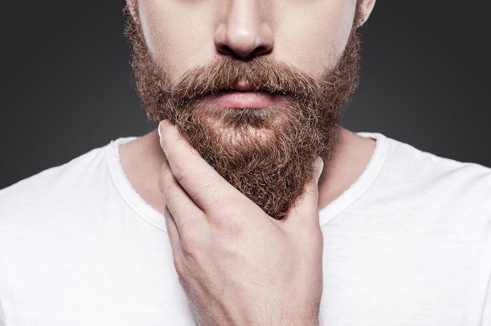 bartformen vollbart trimmen ideen für männer brauner bart mann hält seinen bart weil er ihn ganz wichtig ist selbstgefühl selbstbewusst
